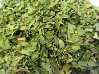 Moringa Blätter Tee