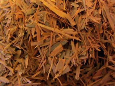 Lapacho Tee Pur